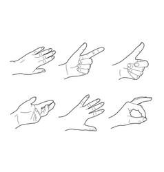 Drawing six woman hands vector