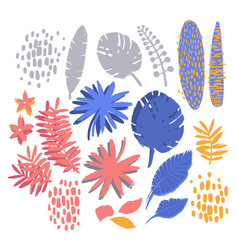 graphic collection of exotic plants drawn with vector image