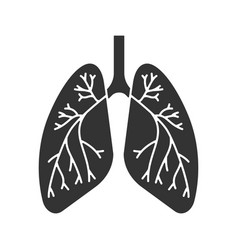 Human lungs with bronchi and bronchioles glyph vector
