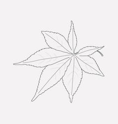 Japans leaf icon line element vector