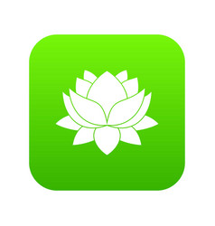 water lily flower icon digital green vector image