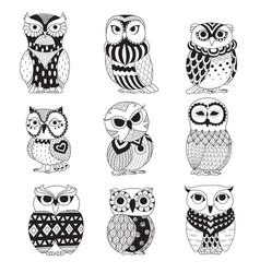 Zen owls vector