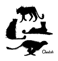 graphic collection of cheetahs drawn with rough vector image