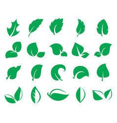 green leaf icons isolated on a white background vector image