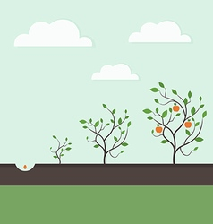 Growth of a plant3 vector