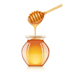 jar and dipper for honey vector image