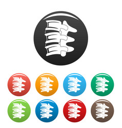Spinal column discs icons set color vector