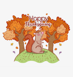 squirrel animal with autumn trees leaves vector image