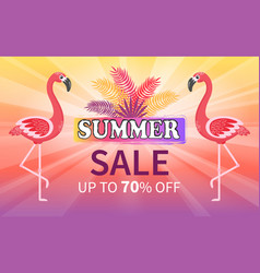 summer sale proposition discount up to 70 percent vector image