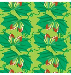 nuts seamless pattern vector image vector image