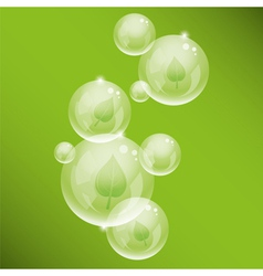 bubbles and green leaves vector image vector image