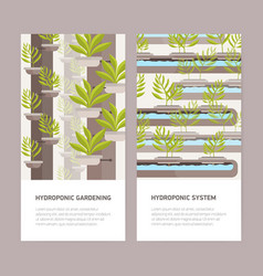 Bundle of vertical banners with plants growing in vector