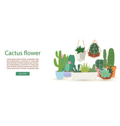 cactus succulents and plants with flowers in pots vector image