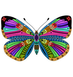 Entangle stylized color butterfly hand drawn vector