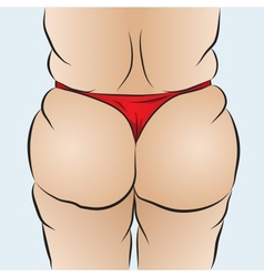 Females bottom vector