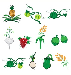 Fruit and vegetable cartoon vector image