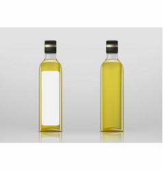 glass transparent blank bottle with olives oil vector image