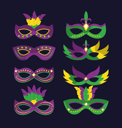 Mardi gras carnival masks with feathers differents vector