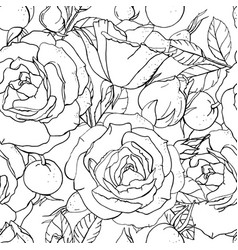 seamless floral pattern with romantic rose flowers vector image