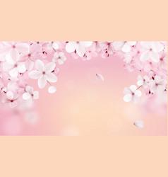 Beautiful print with blossoming light pink sakura vector