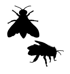 Bee silhouette black white icon vector