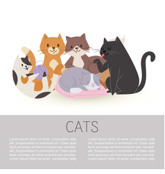cartoon characters cute tabcats vector image