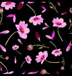 cosmos flowers on black background-flowers in vector image