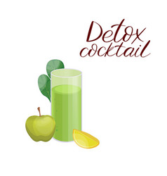 Cleanse Drink Vegetable Vector Images (29)