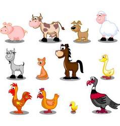 Domestic animals vector