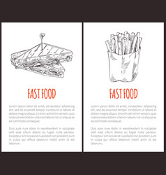 fast food fries and sandwich vector image