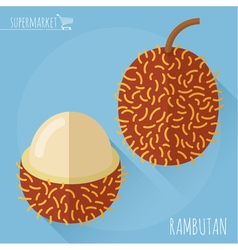 Flat design rambutan icon vector image