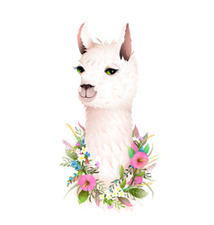 lama cute romantic flowers animal t shirt print vector image