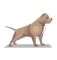 Pitbull minimalist image vector