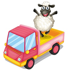 A sheep standing at the back of a truck vector image