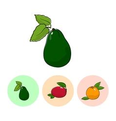 Fruit Icons Avocado Mango Grapefruit vector image