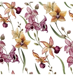 Beautiful orchid flower8 vector image