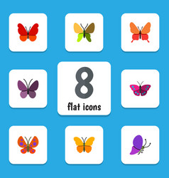 Flat monarch set of butterfly monarch beauty fly vector