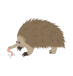 Anteater icon cartoon style vector