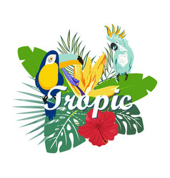 banner with toukan and parrot vector image