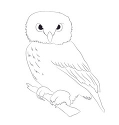 Owl stands drawing lines vector
