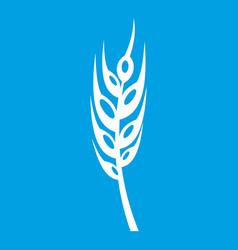 Barley spike icon white vector
