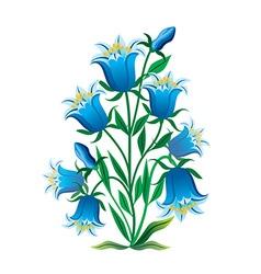 Blue Campanula Plant vector