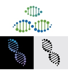 DNA gene vector