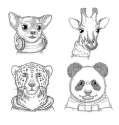 fashion animals hand drawn hipster porterts vector image