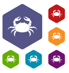 Raw crab icons set hexagon vector