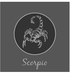 scorpio astrological zodiac symbol horoscope sign vector image