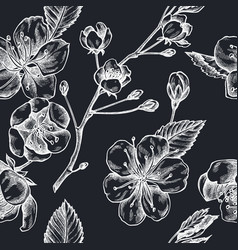 seamless pattern with hand drawn chalk sakura vector image