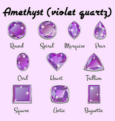 Types of cuts of amethyst vector