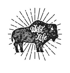 Wild life grunge style bison silhouette isolated vector