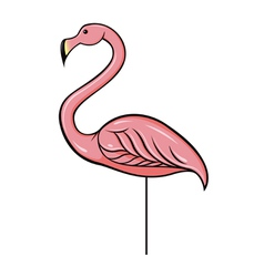 pink plastic flamingo vector image vector image